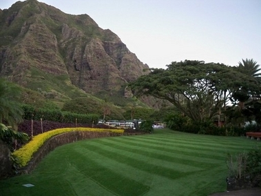 Kualoa Ranch Luau commercial synthetic lawn